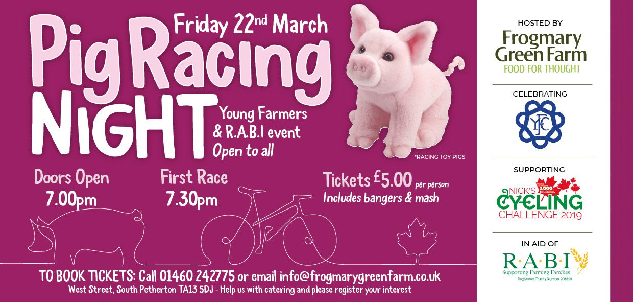 Pig Racing Charity Fundraiser at Frogmary Green Farm, South Petherton
