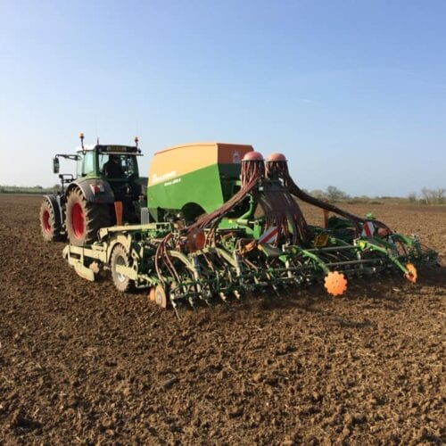 Drilling Triticale in Spring