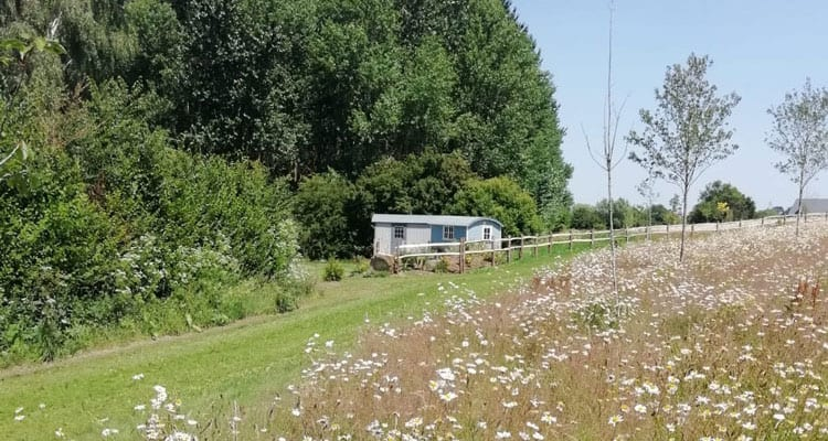 Book a place to stay in Somerset at our Shepherd Huts
