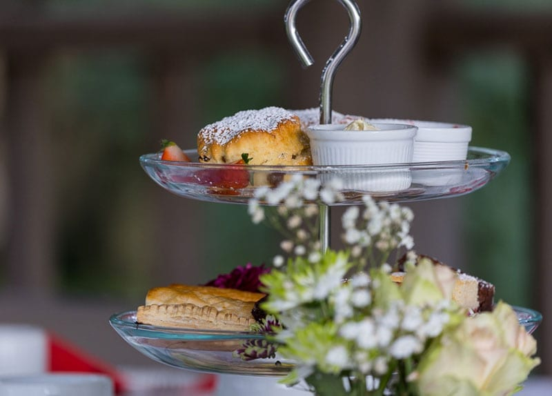 Afternoon teas at Haselbury Mill